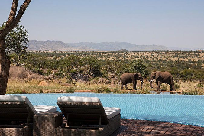 Four Seasons Safari Lodge - Natural Watering Hole View from Pool